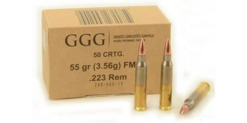 G.G.G. .223 Remington FMJ (5,65x45)